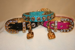 Fashion Collars For Dogs