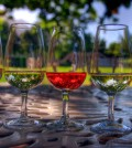 Celebrity-Cruises-Great-Wine-Festival-Irvine-California-Wine-Festivals-Best-Wine-Beverly-Hills-Magazine